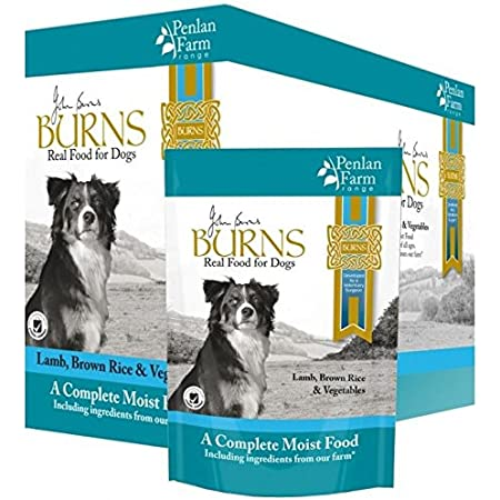 Burns 12 x 400g Penlan Farm Complete Lamb Brown Rice & Veg Wet Dog Food Pouch
