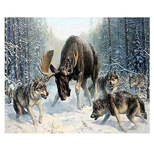 Aapxi malen nach Zahlen,DIY Oil Painting Drawing Canvas with Beginners Brushes Christmas Decor Decorations Gifts Wolf