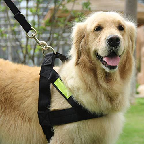 Reflective Pet Leash Großer Hund Mittelgroße Hundeleine Hundekette Satsuma Brustgurt Leine Schwarz (auf Englisch auf dem Reflective Strip) Extra große Büste 92-102 cm Geeignet für mehr als 65 libras