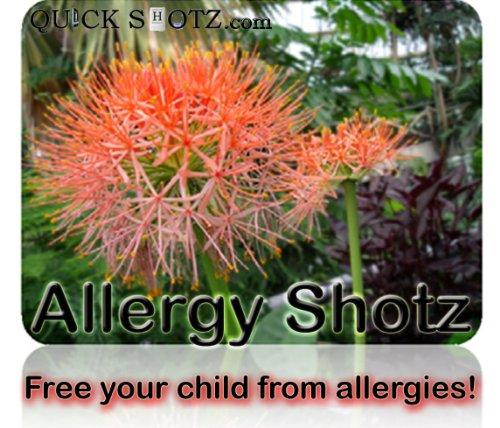 Allergy Shotz (Quick Shotz Book 1)