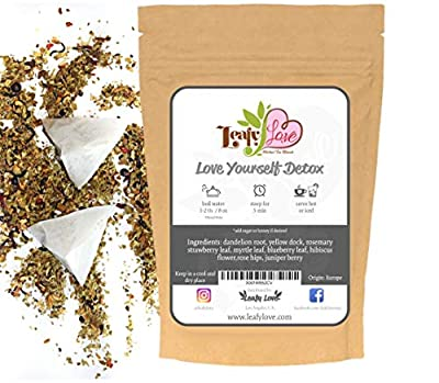 All Natural Everyday Detox Tea with Biodegradable Tea Bags - Healthy Cleansing Support - Improve Toxic Gut- Support Liver - Laxative and Caffeine Free - Dandelion, Yellow Dock, Rosemary, Myrtle Leaf, Triple Berry Blend - 16 Tea Bags from Leafy Love
