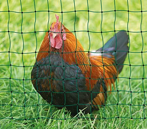 AKO Geflügelnetz, PoultryNet grün, ohne Strom, 112cm, Einzelspitze - 25m - Hühner, Gänse, Puten, Geflügel - vielseitig einsetzbar: Camping, Gartenschutz