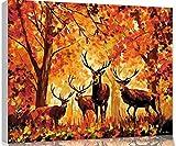 Cortar Animal Doctor Cat pintura al óleo digital números para colorear imágenes por números en lienzo conpinturas decolores para niños enmarcado40 * 50 cm con marco