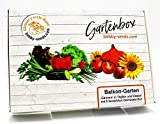 Balkongarten Samen Set von bobby-seeds, 8 Gemüse-Sorten, ausgewählt für den Anbau auf kleinem Raum als Set in repräsentativer Gartenbox, Samen-Set mit 8 Sorten und praktischen Stecketiketten