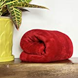 Luxurious Super Soft, Warm and Cozy 30 x 40 Fleece Throw Toddler, Infant or Newborn Baby Blanket for Strollers, Cribs, Car Seats, Kids Bed, Travel, Outdoor & Pets (Red)
