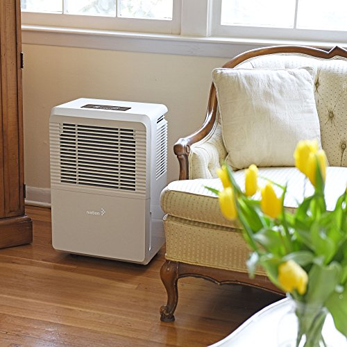 Ivation 70 Pint Energy Star Dehumidifier - Large-Capacity For Spaces Up To 4,500 Sq Ft - Includes Programmable Humidistat, Hose Connector, Auto Shutoff/Restart, Casters & Washable Air Filter, White,