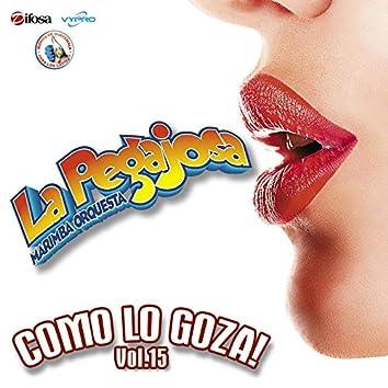 Como Lo Goza! Vol. 15. Música de Guatemala para los Latinos