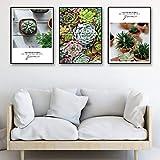 yaofale Kein Rahmen Art Kaktus und Sukkulenten Dekorative