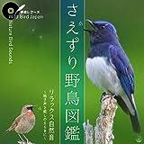 オオルリ (日本三鳴鳥) - 野鳥のさえずり・癒しの自然音(Wild Bird Japan feat. Field Recording Lab)