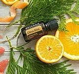 doTerra Citrus Bliss Essential Oil Blend 15 ml