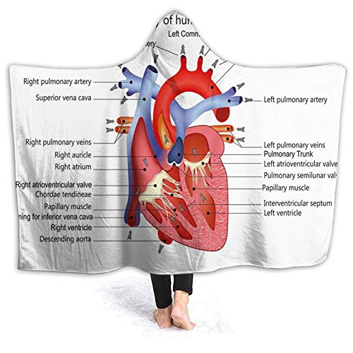 YOWAKi Ultra-Soft Micro Fleece Soft and Warm Throw Hooded Blanket,Educational,Medical Structure of The Hearts Human Body Anatomy Organ Veins Cardiology,60' 50',Coral Red