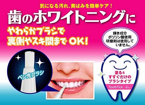 東京企画販売トゥースティックシャイン1本入