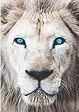 Kit de pintura con diamantes de imitación,cuadros punto de cruz diseño de león con ojos azules, diamantes con numeros painting diamond 5d para manualidades y decoración del hogar, 30 x 40 cm