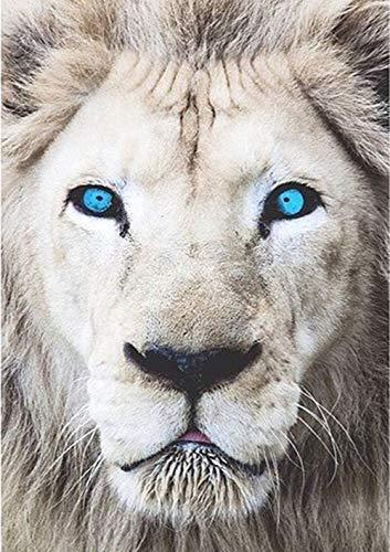 DIY Diamond Painting Kit Blue Eyed Lion,Painting Diamonds Full Drill 5D DIY Diamond Rhinestone Embroidery Cross Stitch Kits Supply Arts Craft Canvas Wall Decor Stickers Home Decor 12x16 inches