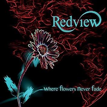 Where Flowers Never Fade