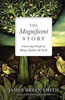 Magnificent Story: Uncovering a Gospel of Beauty, Goodness, and Truth