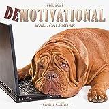 The 2021 Demotivational Wall Calendar (A Funny, Uninspirational, and Humorous 12'x12' Calendar)