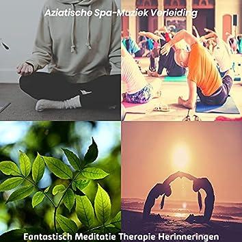 Fantastisch Meditatie Therapie Herinneringen