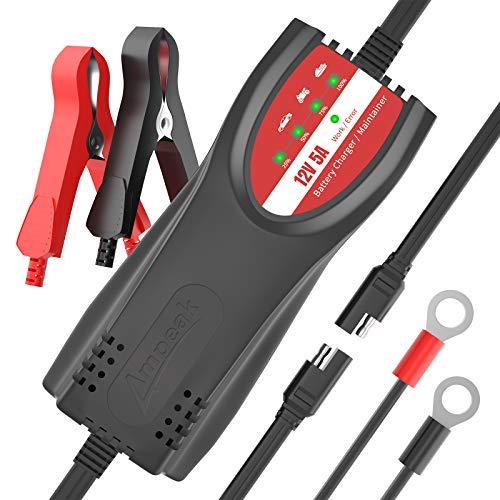 congelador 12 voltios fabricante Ampeak