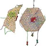 Esenlong 2 pájaros de juguete para colgar loros, juguete para la búsqueda de alimentos, juguete para loros, jaula para cacatúas (accesorios, color aleatorio)