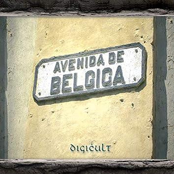 Avenida De Belgica