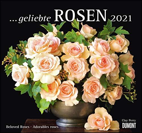... geliebte Rosen 2021 – DUMONT Wandkalender – mit allen wichtigen Feiertagen – Format 38,0 x 35,5 cm