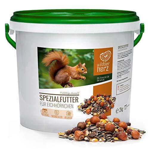 wildtier herz Artgerechtes Eichhörnchenfutter 2kg für Eichhörnchen und Streifenhörnchen I Ganzjahres Futter für Eichhörnchen I Streifenhörnchen Futter
