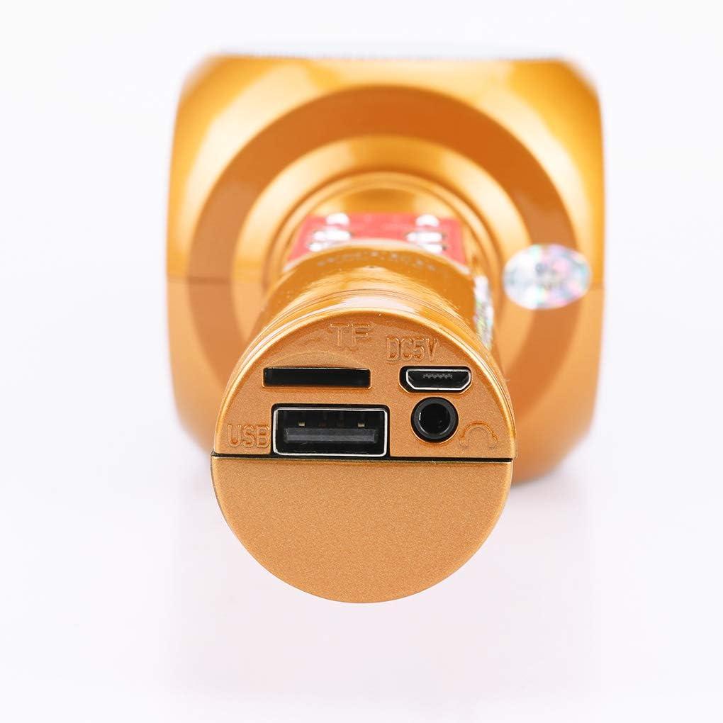 rongweiwang WS-1816 Bluetooth Wireless Microfono Karaoke K Canzone WS-1816 K Microfono Pocket Microfono Altoparlante Macchina per//Telefono Android