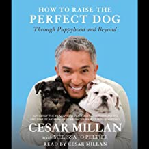 How to Raise the Perfect Dog: Through Puppyhood and Beyond