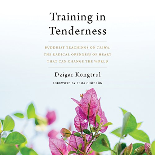 Training in Tenderness cover art