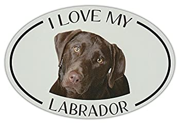 Crazy Sticker Guy Oval Dog Breed Picture Car Magnet - I Love My Labrador  Chocolate Lab