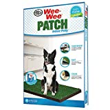 Four Paws Wee-Wee Patch Medium Indoor Potty Dog Housebreaking Tray, 20' by 30'
