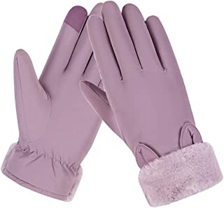 SGJFZD Winter Warm Gloves Elegant Touch Screen Gloves Riding Driving Outdoor Gloves for Women Thermal Gloves (Color : Purple, Size : OneSize)