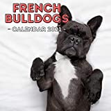 French Bulldogs: 2021 Wall Calendar, Cute Gift Idea For Bulldog Lovers Or Owners Men And Women