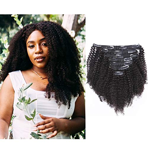 Afro Kinky Curly Clip in Human Remy Hair Extensions Brazilian Curly Clips Hair Extensions 4B 4C 8A Virgin Thick Natural Black Color Clip on For Black Women 10-22 inch (12 inch, AC #1B)
