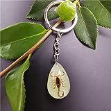 SQSHWL Único Luminoso Insecto Cristal Gota Llavero Monedero Hombres Regalo de Regalo 24 * 17 * 10 mm 12-1YK