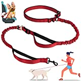 Zhilishu Hands Free Dog Leash, 6-in-1 Multifunctional Dog Running Leash Shock Absorbing Bungee Adjustable Waist Leash for Dog with Car Seat Belt, Dual Padded Handle for Training Hiking Jogging (Red)