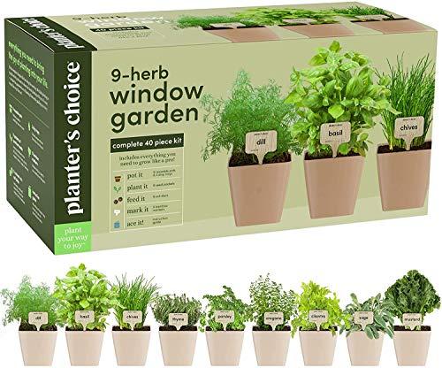9 Herb Window Garden – Indoor Herb Growing Kit – Kitchen Windowsill Starter Kit – Easily Grow 9 Herbs Plants from Scratch with Comprehensive Guide – Unique Gardening Gifts for Women & Men