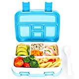 Best Bento Box For Kids - Maydolly bento boxes kids lunch boxes bento-styled lunch Review
