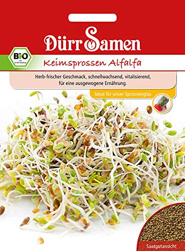 Dürr Samen BIO Keimsprossen Alfalfa Inhalt 50 g | Sprossen sind Eiweiß Quelle und reich an Vitamin C B E | Proteine, Mineralstoffe & Mikronährstoffe