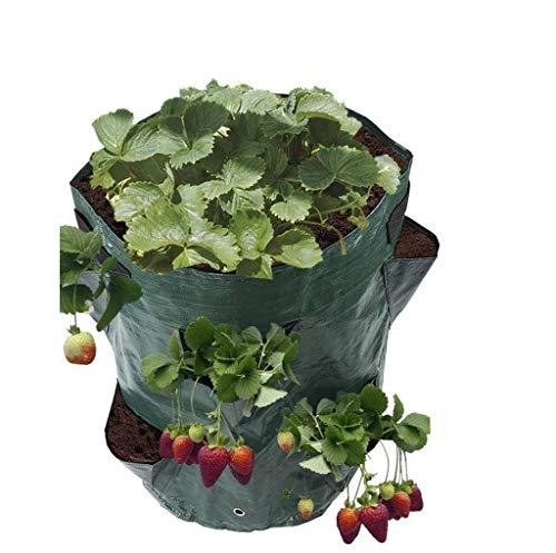 WZ Multi-Port-Pflanze Tasche 3PCS PE-Hängende Art-Erdbeere-Beutel Pflanze Hängende Korb Wachstum Luftgarten Erdbeere Pflanze Wächst Tasche Bonsai Blumentopf Garten Supplies