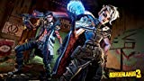 Immagine 2 borderlands 3 playstation 4