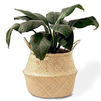 Best planter basket Reviews