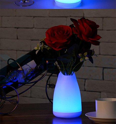 SUGER-LIGHT Vase Lampe Bureau LED Lumière Noël Cadeau Copains Dames Romantique Fée Chambre Salle à Manger Décoration