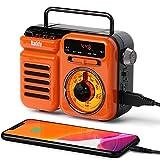Raddy RW3 Radio de secours à manivelle rétro AM/FM/NOAA, fonctionne à l'énergie...