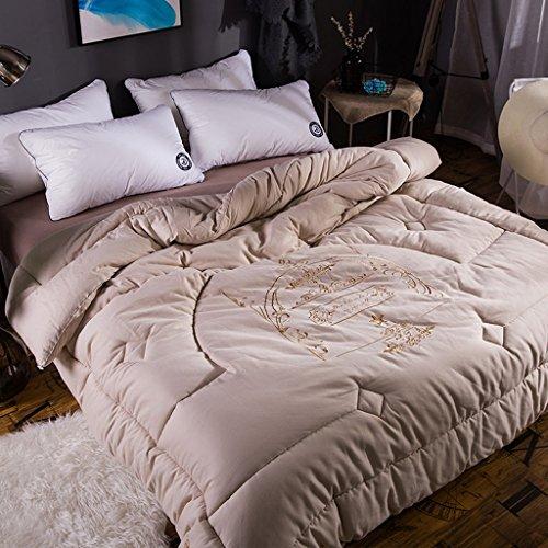 MMM Coton hiver printemps et automne Quilt épais Double brodé Quilt Core Sanding literie ( Couleur : Or , taille : 200*230cm(4kg) )