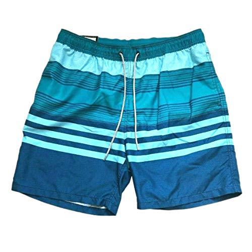 Kirkland Signature Men's Elastic Waistband Mesh Lined Swim Short Trunk (Blue Melange Stripe, Large)