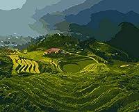 NYIXIA 数字油絵 フレーム付き 、数字キット塗り絵 手塗り DIY絵、段丘、初心者 子供と大人のためのキャンバス油絵キット、数字キットによるペイント - 40*50cm