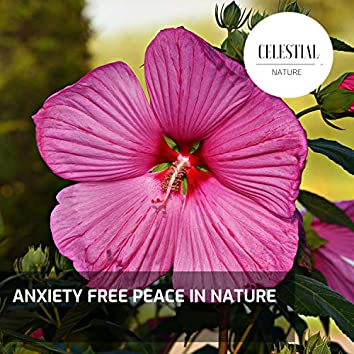 Anxiety Free Peace in Nature