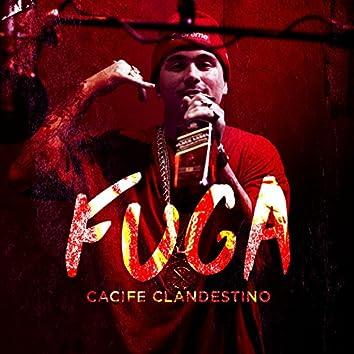 Fuga - Single